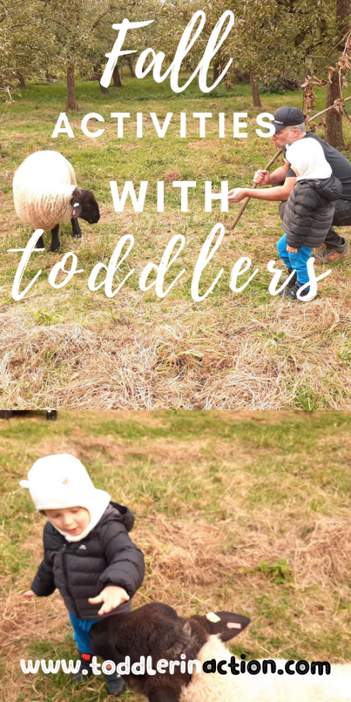 Fall activities with toddlers - Apple Picking