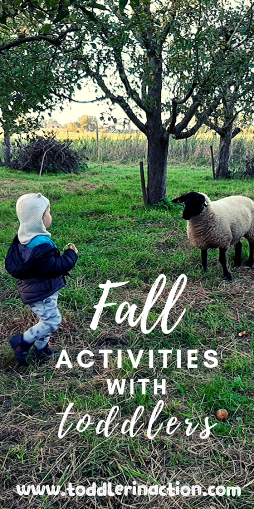 Apple Picking - Fall activities with kids