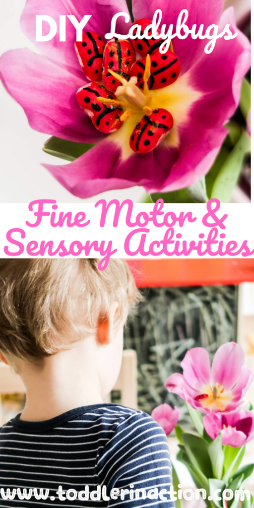 DIY Ladybugs Sensory and Fine Motor Activities