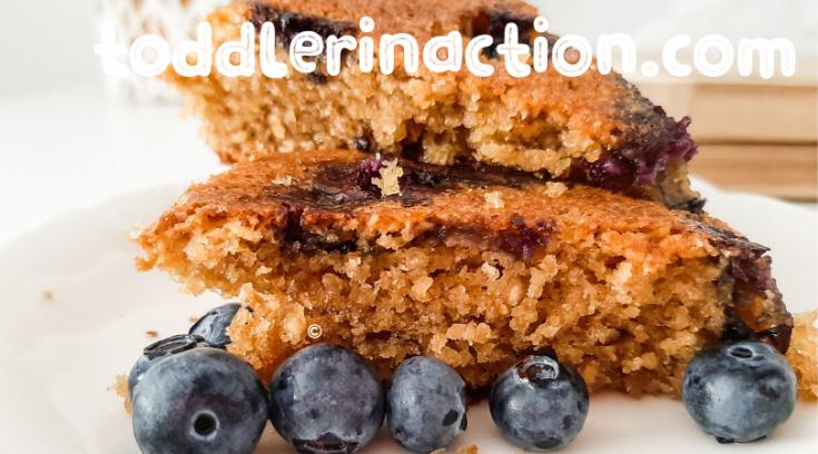 EASY HEALTHY OATMEAL BLUEBERRY CAKE RECIPE