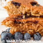 EASY, HEALTHY OATMEAL BLUEBERRY CAKE